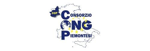 Consorzio Ong Piemonte